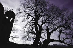 Church and silhouette of a tree. And a man Stock Photos