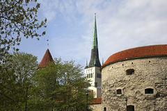 Church of St. Olaf and Fat Margaret tower in Tallinn. Estonia Stock Photography