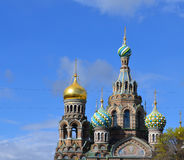 The Church in St. Petersburg Royalty Free Stock Photo