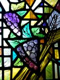 Church: stained glass window with grapes Stock Images