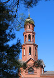 Church Steeple. Set back from fir tree branches. Brickwork facade with bell tower visible Stock Photos
