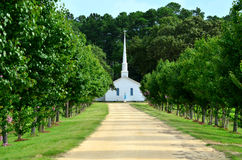Church Steeple Dirt Road Lined with Trees. View of a white church with a tall church steeple and a Jesus statue which can be seen from the entrance of a long Stock Photos