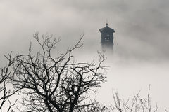 Church steeple and tree branches in fog Stock Photography