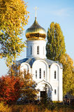 Church surrounded by golden trees Stock Image