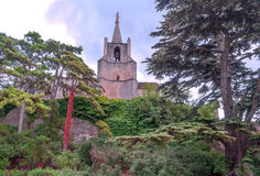 Church surrounded by trees Royalty Free Stock Photo