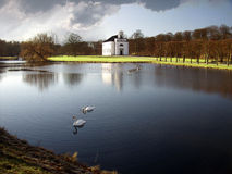 Church and swan Royalty Free Stock Photo