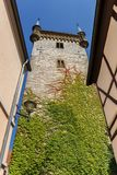 Church tower with colorful ivy in Warendorf stock photos