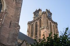 Church tower of the Grote Kerk in Dordrecht, Netherlands. Seen from below, above a tree Stock Photography
