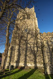 Church Tower. Imposing church tower with stark tree shadows Stock Photos