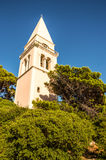Church tower. Rising above vegetation Stock Images