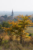 Church in a village and a tree in autumn - vertical view Stock Image