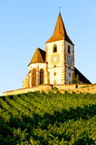 Church with vineyard Royalty Free Stock Photo