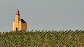 Church in vineyard no.2 Stock Photos