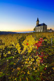 Church and vineyards of Saint Laurent d'Oingt during sunrise, Be Stock Images