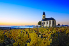Church and vineyards of Saint Laurent d'Oingt during sunrise, Be Royalty Free Stock Photos