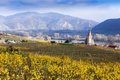 Church in Weissenkirchen. Wachau valley. Autumn colored leaves and vineyards. royalty free stock photos