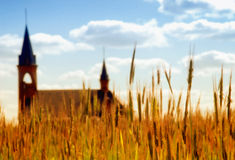 Church in a wheat field. Stock Photo
