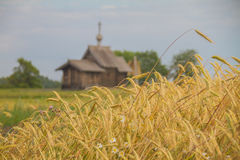 The church and the wheat Royalty Free Stock Images