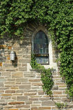 Church window. With brick building covered in vine leaves stock photography