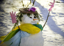 Free Churchlady Snowman Stock Photo - 29038070