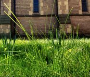 Churchyard Grass Royalty Free Stock Photography