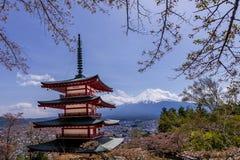 Chureito pagod, Fujiyoshida, en av de mest berömda sikterna av Mount Fuji och Japan med körsbärsröda blomningar som är bekanta so fotografering för bildbyråer