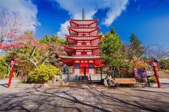 Chureito pagod i höst Fotografering för Bildbyråer