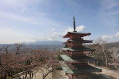 Chureito Pagoda at Arakura Sengen Shrine. Mt Fuji viewed from behind Chureito Pagoda at 2016 Stock Images
