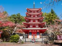 Chureito pagoda. In autumn royalty free stock photography