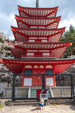 Chureito Pagoda in cherry blossoms springtime royalty free stock image
