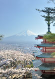 Chureito Pagoda and Fuji in Japan Royalty Free Stock Photos