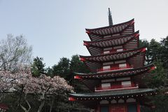 Chureito Pagoda, Japan Royalty Free Stock Photo