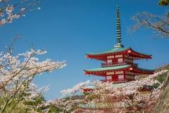 Chureito Pagoda in spring, Fujiyoshida Stock Photography