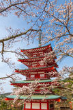 Chureito Pagoda in spring, Japan. Chureito Pagoda in spring, Fujiyoshida, Japan Stock Photos