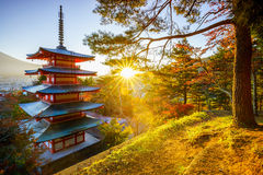 Chureito Pagoda with sun flare, Fujiyoshida, Japan. Chureito Pagoda with sun flare at sunset, Fujiyoshida, Japan Stock Image