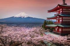 Chureito-Pagode mit Kirschblüte u. schönem Mt Fuji Ansicht Stockbilder