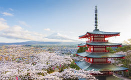 Chureito Rode Pagode en Sakura Stock Fotografie