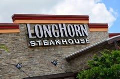 Churrasqueira de Longhorn Foto de Stock Royalty Free