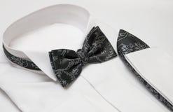 chusta motyli krawat Fotografia Stock