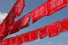 chusteczki wykładają czerwony Obraz Royalty Free