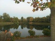 Chute à l'étang Photographie stock libre de droits