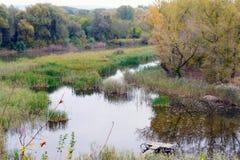 Chute au-dessus du lac Photo stock