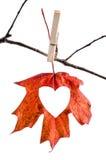 Chute d'amour Photographie stock libre de droits