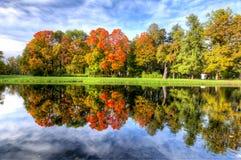 Chute d'or d'automne mûr en parc d'Alexandre, Pushkin, St Petersbourg, Russie Image stock