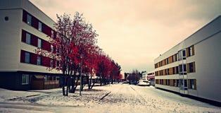 Chute d'hiver Photos libres de droits
