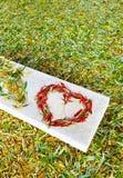 Chute dans l'amour Image stock