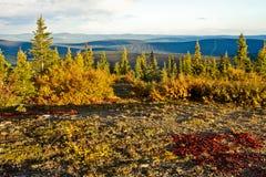 Chute dans l'intérieur de l'Alaska Images stock