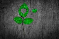 Chute dans la métaphore de photo d'amour Feuille d'érable avec la forme de coeur sur le fond en bois Images libres de droits