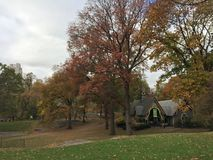 Chute dans le Central Park Image libre de droits