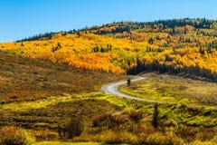 Chute dans Steamboat Springs le Colorado Image libre de droits